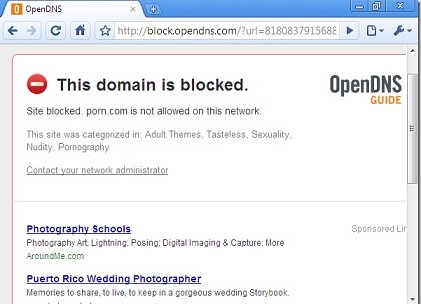 opendns - блокировка домена domain is blocked
