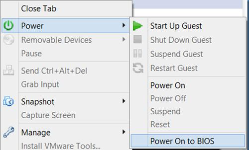 vmware включить виртуальную машину со входом в BIOS