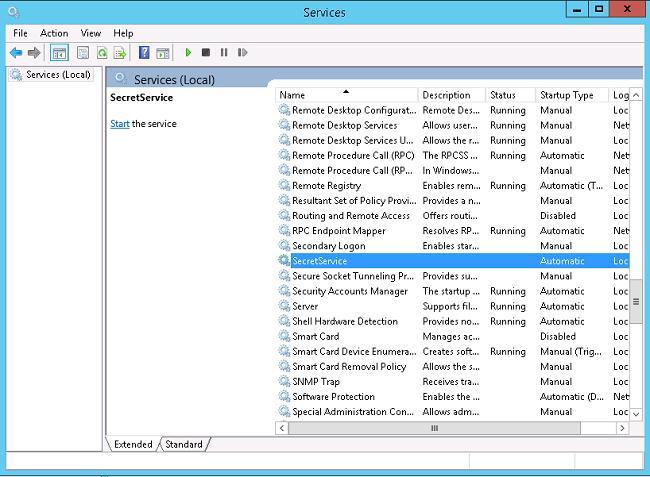 Windows 8 secret service