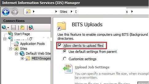 IIS разрешить загрузку файла