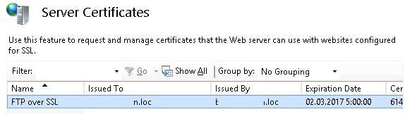 SSL сертификаты в консоли IIS