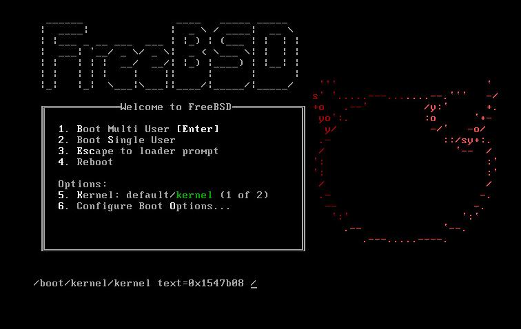 freebsd 11 под esxi5.5