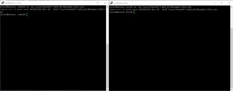 pdsh -w server[1,2] cd /root && wget iso