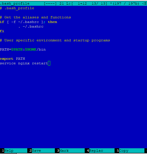 .bash_profile - запуск скрипта при старте сессии