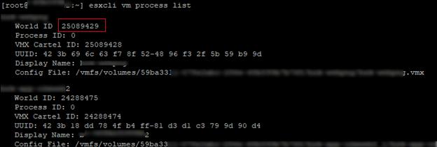 esxcli vm process list - список віртуальних машин