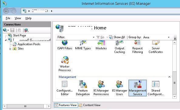 настройка iis management service