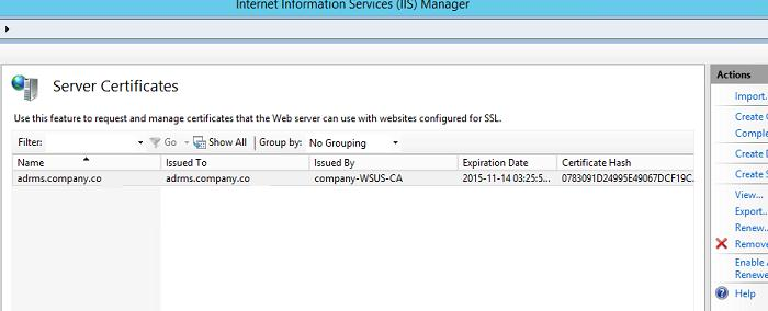 ssl сертификат в IIS