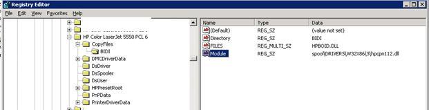 Ветка реестра bidi в параметрах общего сетевого принтера HP