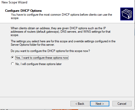 настроить опции dhcp области