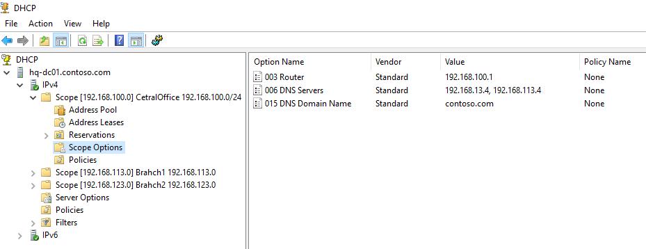 опции DHCP scope
