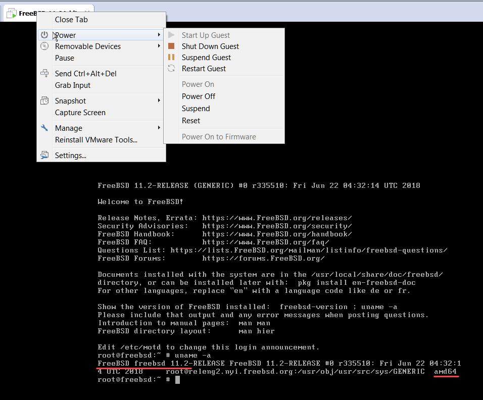 виртуальная машина с freebsd 11.2