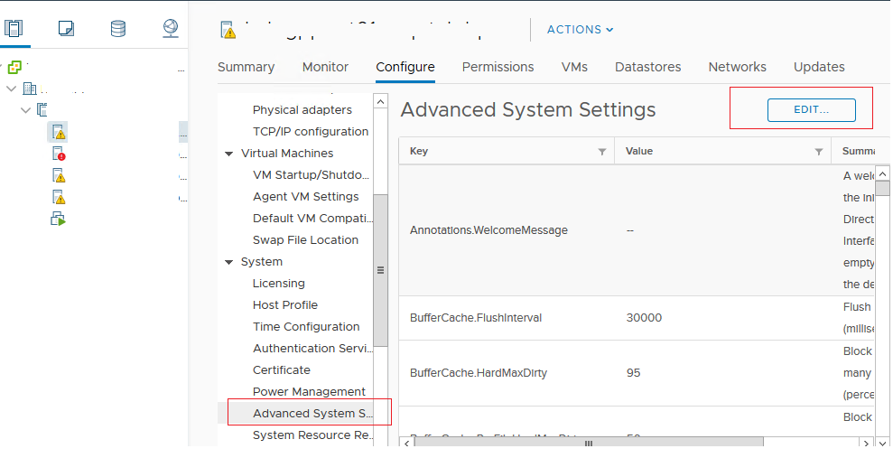vmware Advanced System Settings