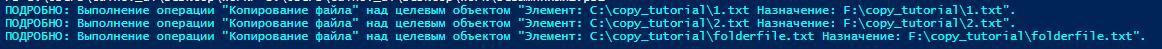 copy-item verbose лог