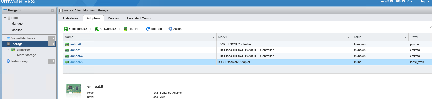 vmhba65 типа iSCSI Software Adapter